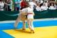 Judo2012-KFA-074