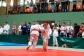 Judo2012-KFA-034